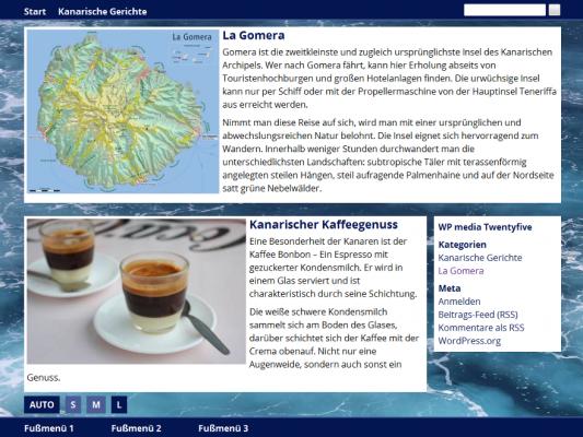 Screenshot vom WP media Twentyfive WordPress Theme